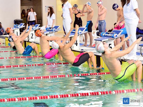 Vasca Da Nuoto : Coppa tokyo summer edition da oggi al palazzo del nuoto di torino