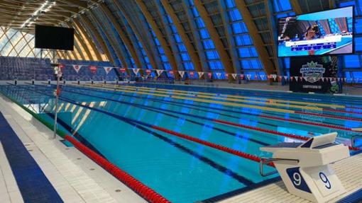 Campionati Europei Junior, una medaglia e una finale per il nuoto piemontese